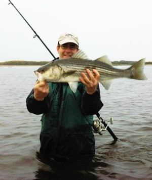 Chris Young with a striper caught on the Joppa Flats. Photo courtesy of Surfland Bait and Tackle's Facebook Page