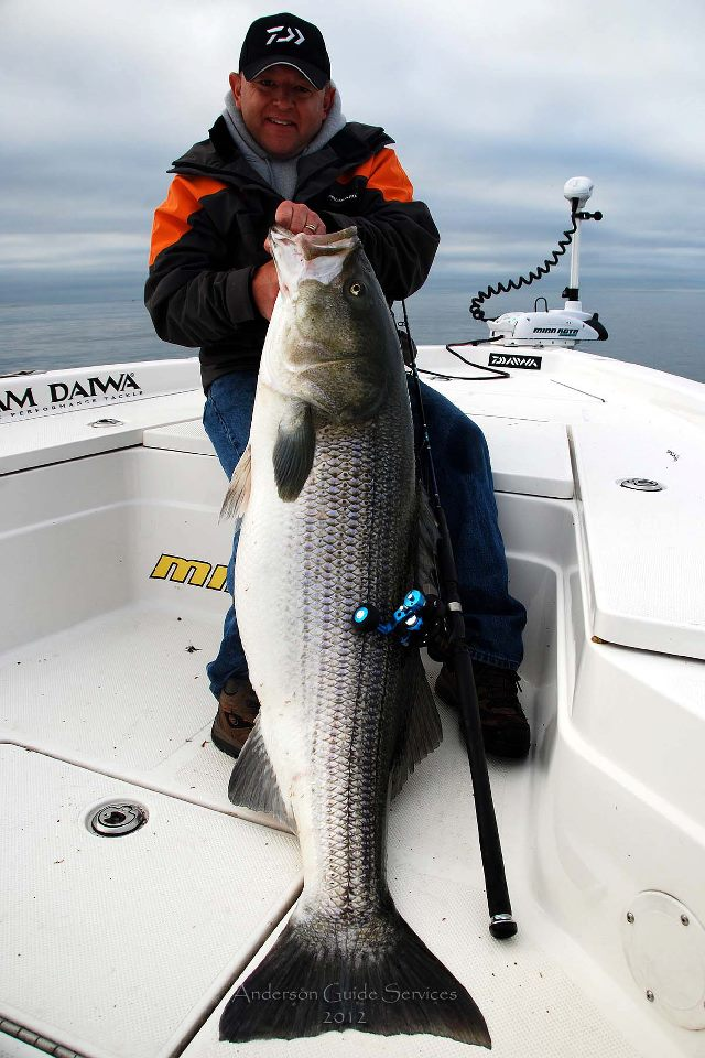 Blaine Anderson Connecticut 74-pound striped bass