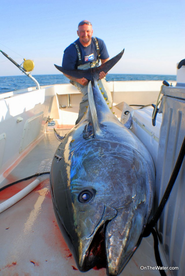 Capt. Jack with the 104-inch giant bluefin tuna