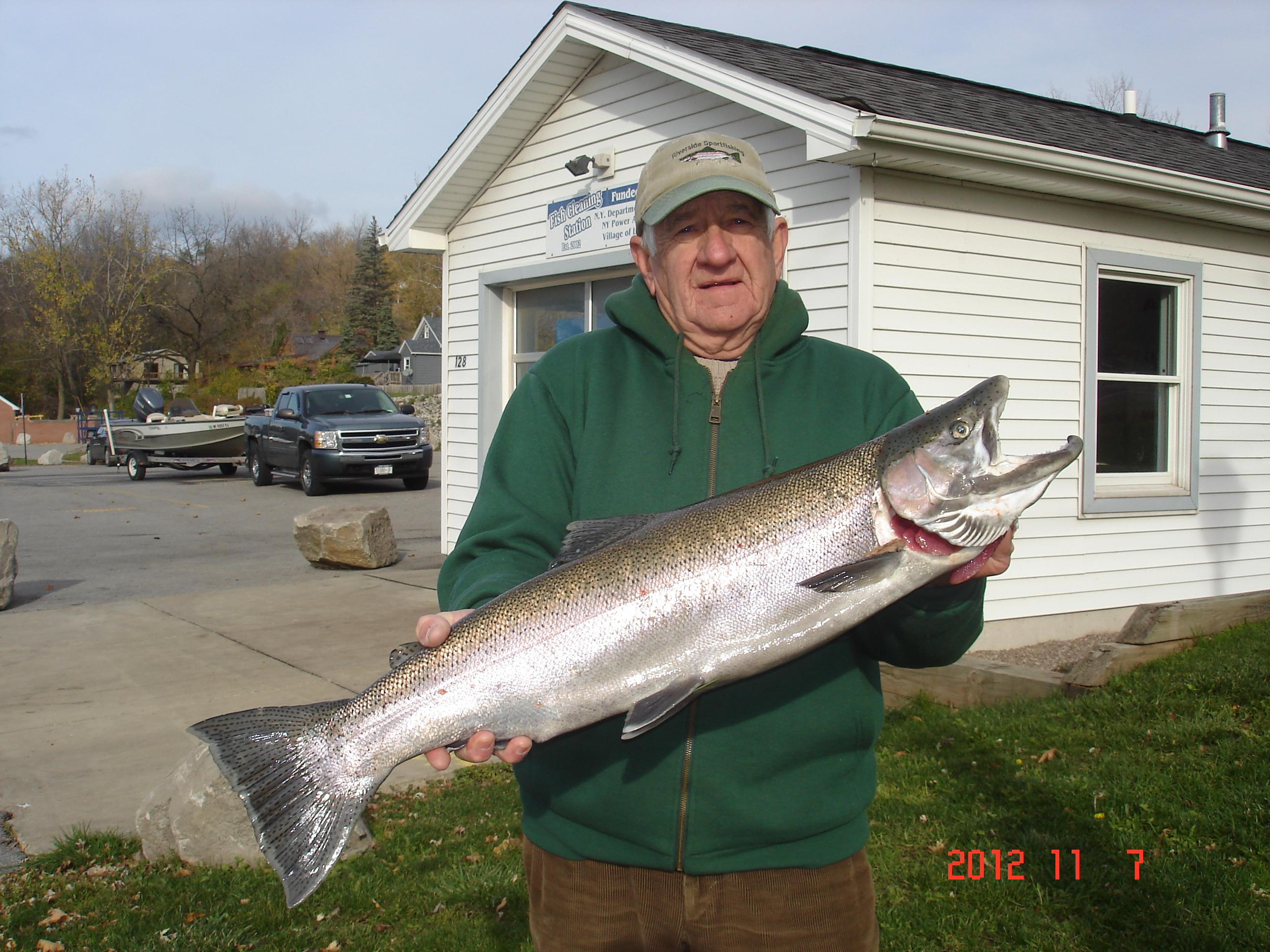 Lewiston steelhead report masturbation at home for Niagara river fishing report