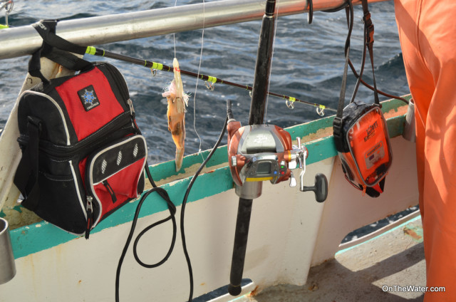A few fishermen used electric reels to bring the fish and rigs up from the depths.