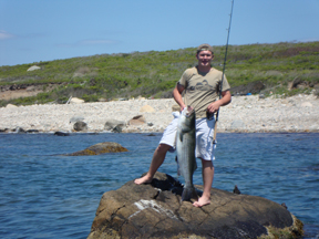 cape cod and buzzards bay fishing report 6-22-2012 - on the water, Fishing Bait