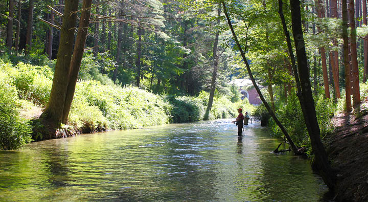 Road trip swift river belchertown ma for Swift river fly fishing