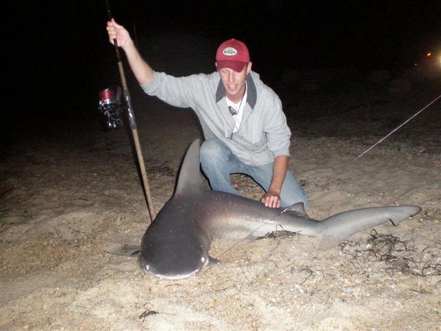 Brown sharkin 39 on rack and fin radio for Shark fishing nj