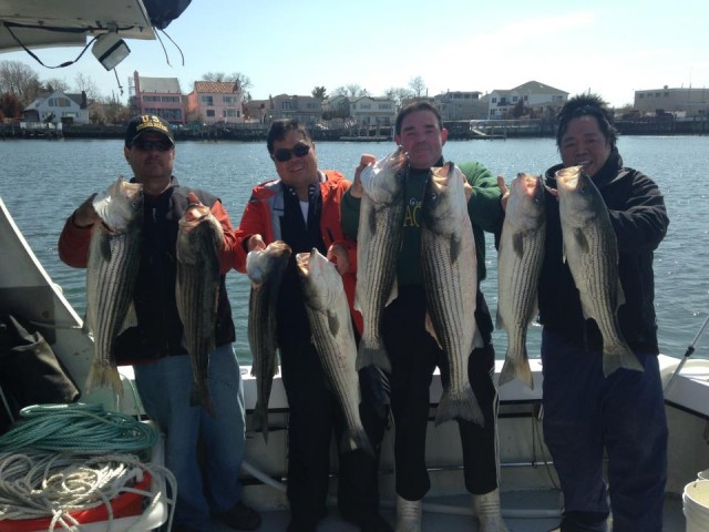 South Shore Stripers