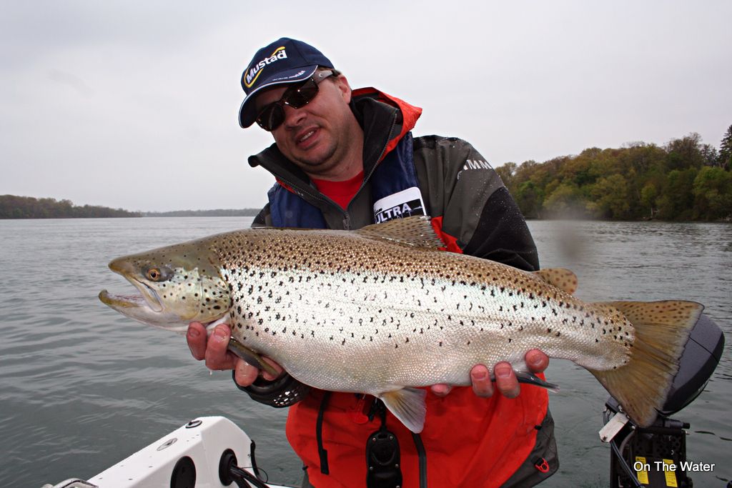 Freshwater variety in lewiston ny fishing report for Lower niagara river fishing report