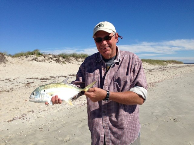 A surf-caught Cape Cod jack crevalle from October 2013.