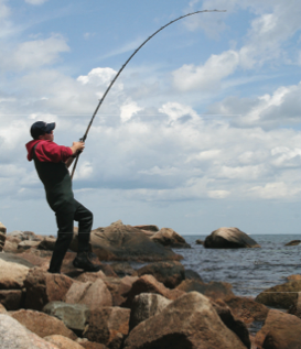 The rocks at Nobska Light offer a chance at big fish for serious surfcasters.