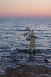 From the surf jetty fishing tips for Long island surf fishing report
