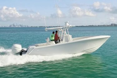 SeaVee 290
