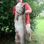 Story and Photos: Potential World Record Striper