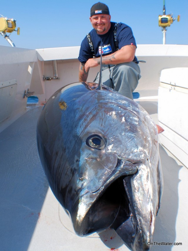 Giant tuna fishing for Tuna fishing pole