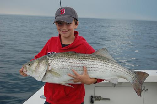 Massachusetts new hampshire maine fishing reports 10 for Ma fishing report