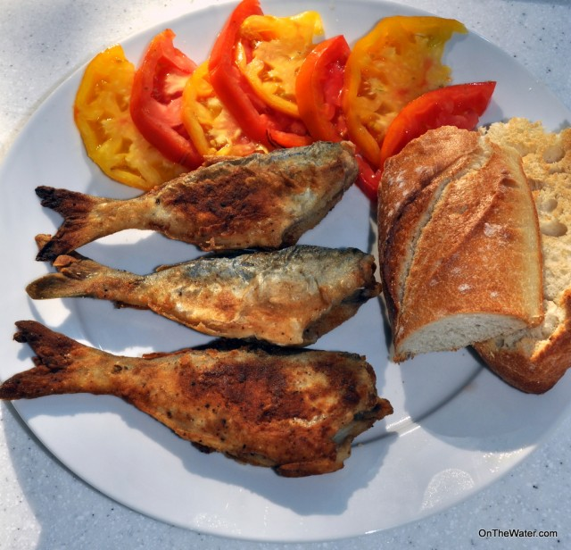 Snapper bluefish recipe for Blue fish recipes