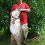 It's Official: New World Record Striper