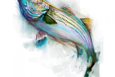 striperriseweb1