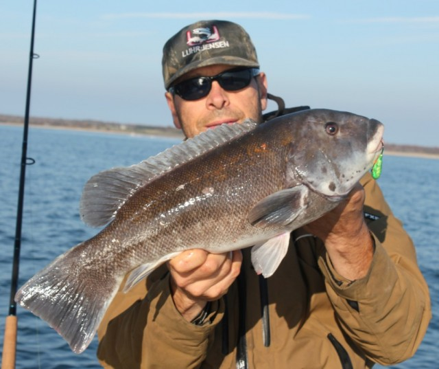 Cape Cod And Buzzards Bay Fishing Report 11-1-2012