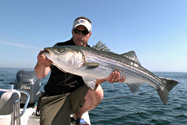 Race Point Stripers
