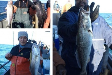 Winter-Offshore-Weakfish-640x553