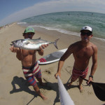Reader E-Mail: Bonito From a Stand-Up Paddleboard