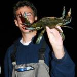Blue Crabbin' Basics
