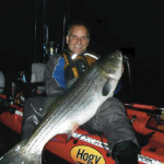 Targeting Monster Stripers from a Kayak