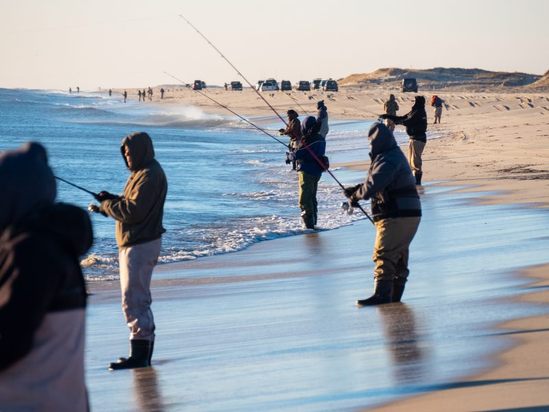 Late November in New Jersey is a great time to catch schoolie stripers during their migration south.