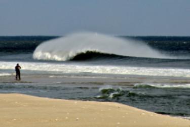 nj-surf-8-1