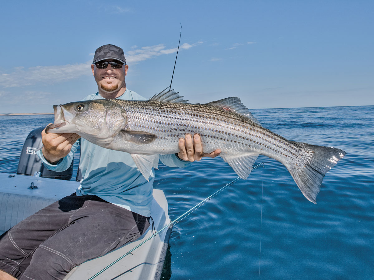 The Striper Migration: When Will the Bass Return? - On The Water