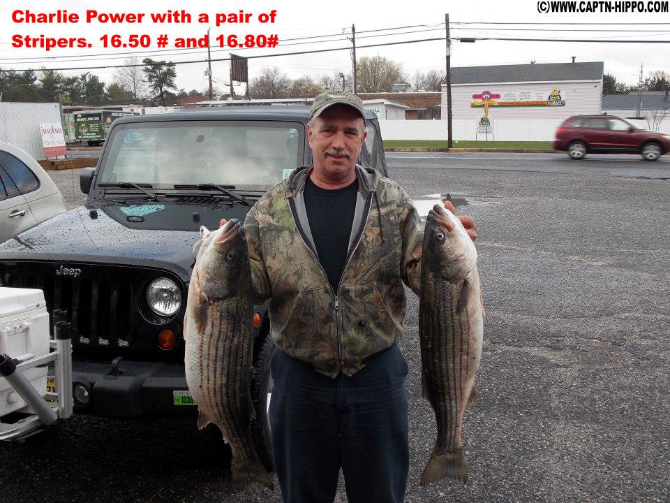 new jersey fishing report for 5 1 2014 on the water