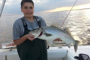 "Justin Fisher kicked things off with this 32"" fish taken off the coast of New Jersey on May 1st."