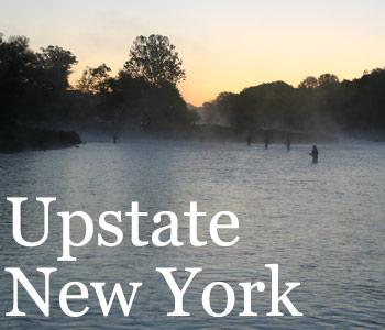 New York - Upstate forecast thumbnail