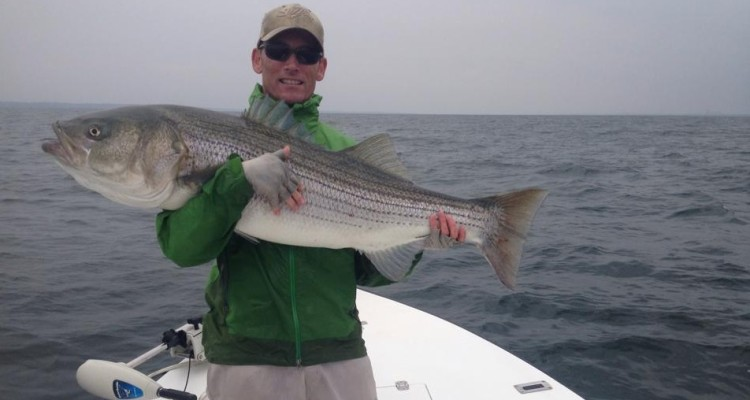 Big bass and blues on bunker in western long island sound for Bunker up fishing