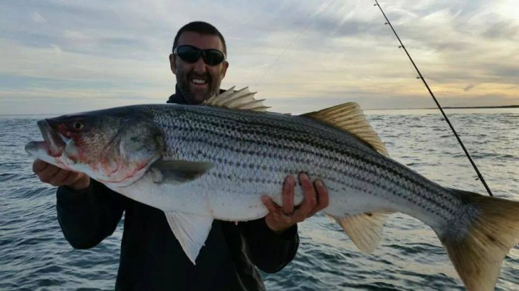 Fishing ct update 6 26 2014 on the water for Fishing report ct