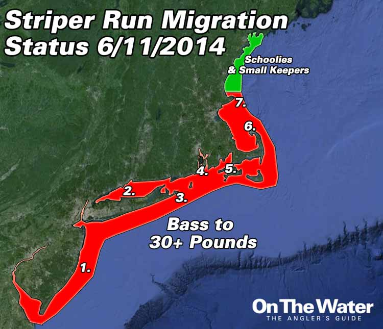Striper migration update june 11 2014 on the water for Long island sound fishing spots