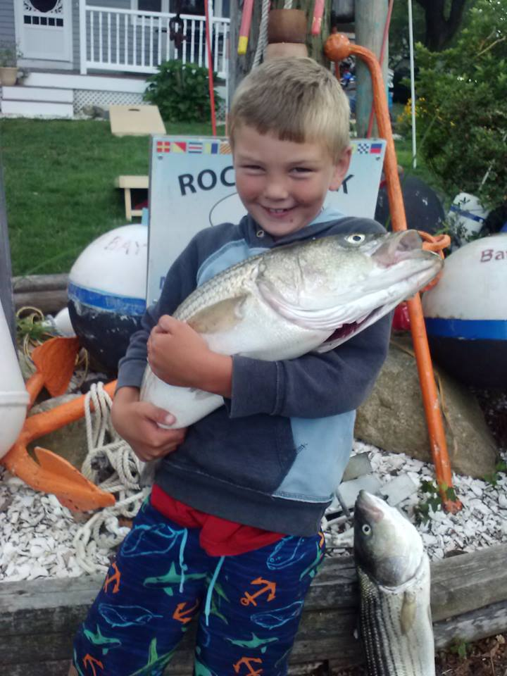 Massachusetts fishing report 7 31 14 on the water for Ma fishing report