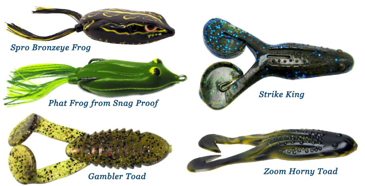 Best bass lure for pond fishing page 2 for Top water frogs bass fishing