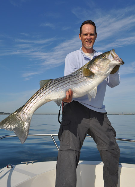 Bunker can be difficult to gather and store, but this technique consistently produces big stripers.