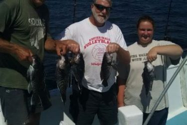 The Miss Belmar Princess had no problem finding black sea bass earlier this week.