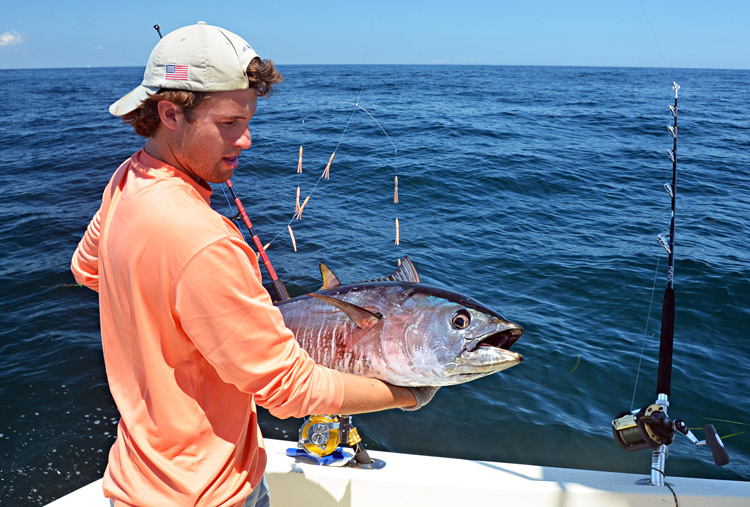 South of the vineyard bluefin report august 9 2014 on for Saltwater fishing license ny