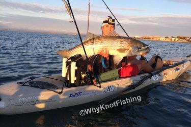 """Joe shows off his 42"""" bass caught on a 24/7 lures mully spook last Saturday morning."""