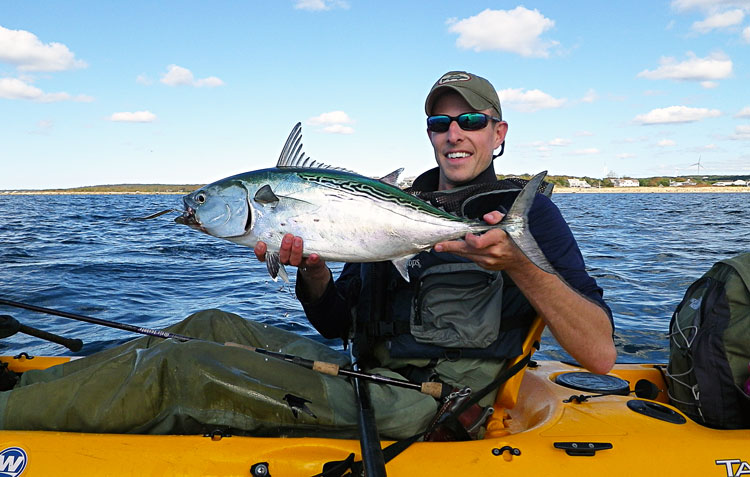 Catching false albacore via kayak is one of September's biggest thrills.