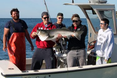 Nat Chalkley of Get the Net Charters out of Woods Hole put his clients on some big stripers along the Elizabeth's this week.