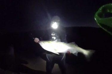 video_northshore_surfcasitng