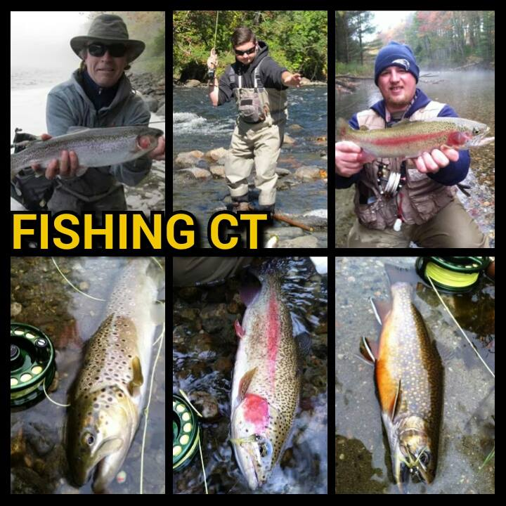 Pictured is a few of our contributers, Ron Merly, Tristan Wilgan and Michael Andrews with some beautiful trout.