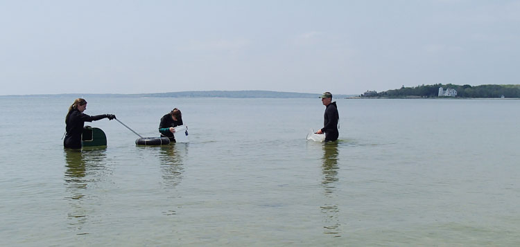 Carly, Susan and dave Paling (left to right) begin their search for the tastiest shellfish in the sea.