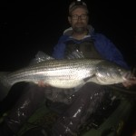 Striped Bass Still Biting in Maine