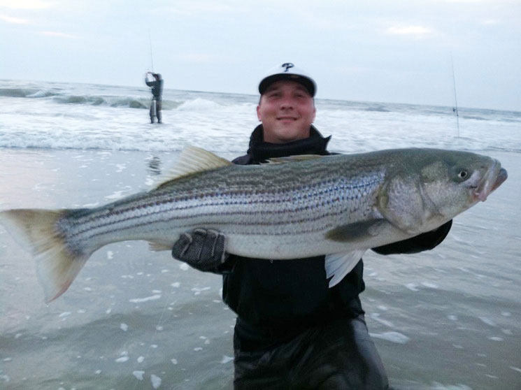 best time to catch striped bass in nj
