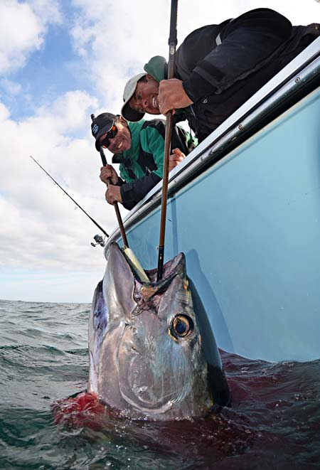 Craig Cantelmo of Van Staal and Capt. Bobby Rice hoist a big bluefin tuna taken at Stellwagen this week.