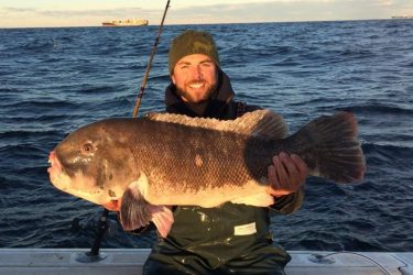 NYS tautog record